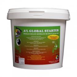 A'L GLOBAL STARTER